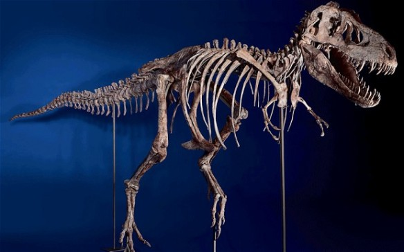Real-Life Time Eaters Stripping the Fossil Record